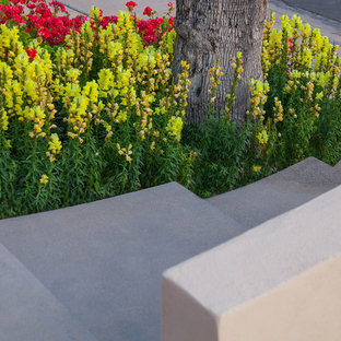 This is an example of a mid-sized modern full sun front yard landscaping in Phoenix.