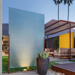 Moderner Garten hinter dem Haus mit Kübelpflanzen in Phoenix