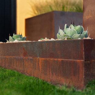 Design ideas for a mid-sized modern full sun front yard formal garden in Phoenix.