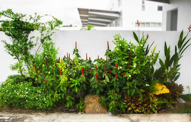 Contemporary Garden by Soul Garden