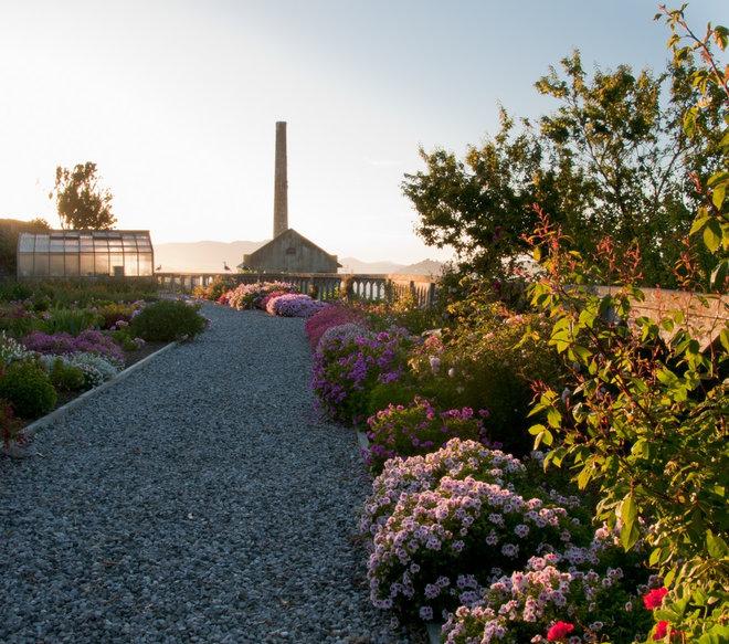 Landscape The Gardens of Alcatraz