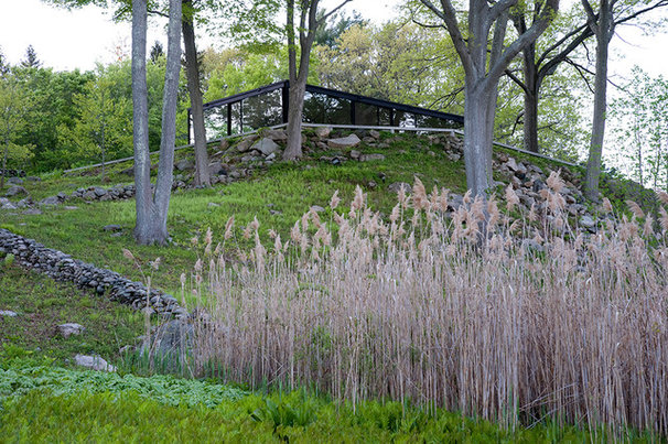 Traditional Landscape by The Philip Johnson Glass House