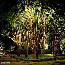 Traditional Landscape by Moonlighting Landscape Lighting Systems