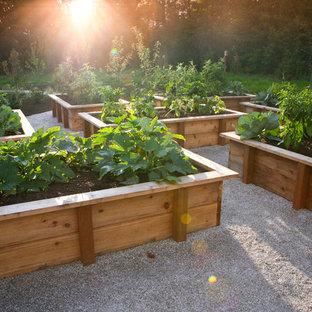 На фото: солнечные огороды на участке в стиле кантри с освещенностью