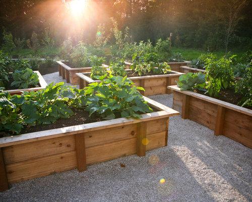 Building Vegetable Garden Boxes Houzz