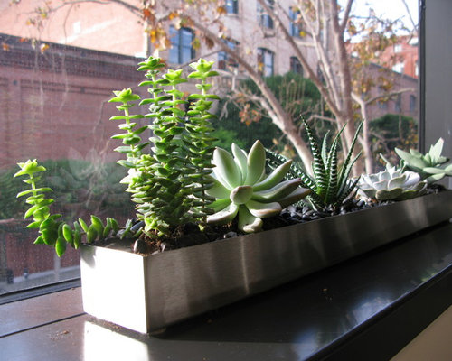 Narrow Planter Ideas Pictures Remodel And Decor
