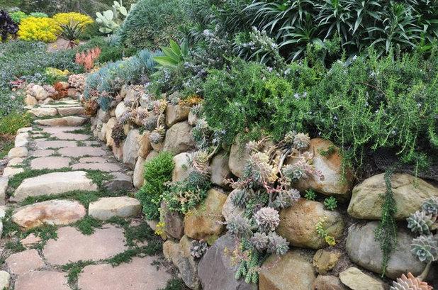 Guida Houzz per Esperti: Come Creare un Giardino Roccioso Asciutto
