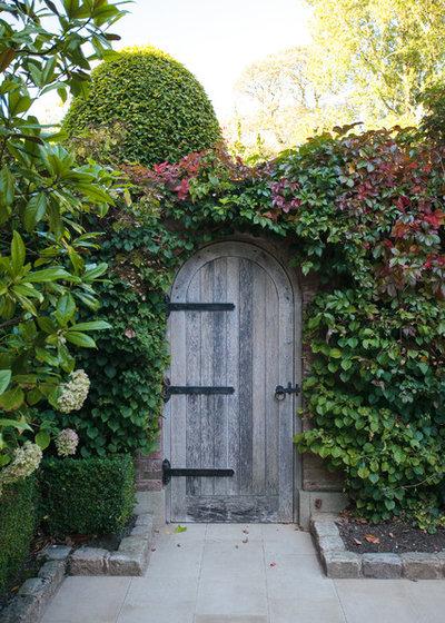 Rampicanti resistenti al freddo per giardini e terrazzi for Piante rampicanti sempreverdi resistenti al freddo