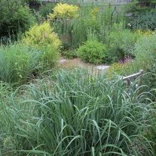 Traditional Landscape by Benjamin Vogt / Monarch Gardens