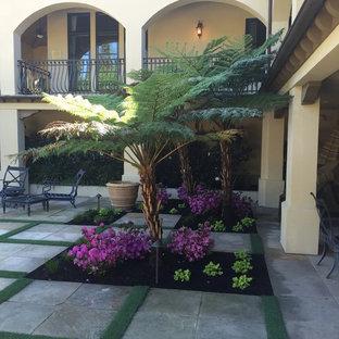 サンフランシスコの大きい、夏の地中海スタイルのおしゃれな裏庭 (日向、コンクリート敷き) の写真