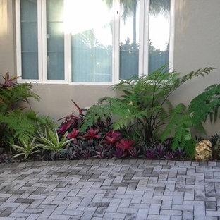 Idee per un piccolo giardino tropicale in ombra davanti casa in primavera con un ingresso o sentiero e pavimentazioni in cemento