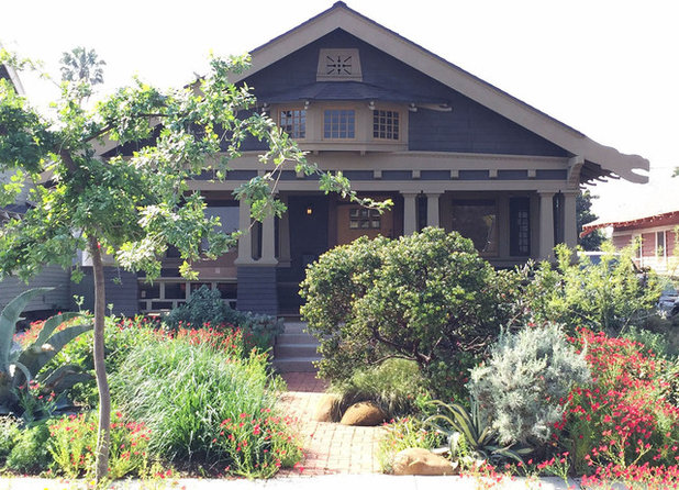 Native Plants Bring 10 Southern California Front Yard Gardens to Life