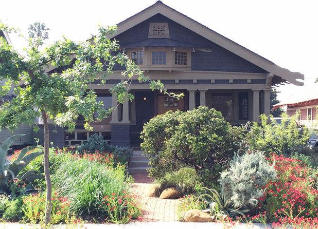 Native Plants Bring 10 Southern California Front Yard