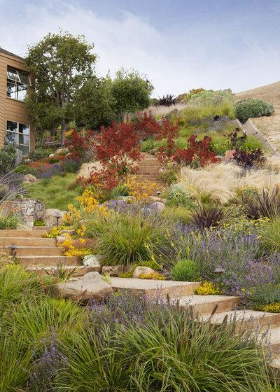 Beach Style Garden by Arterra Landscape Architects