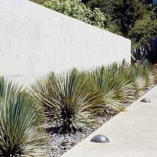 Modern Landscape by GLS Architecture/Landscape Architecture