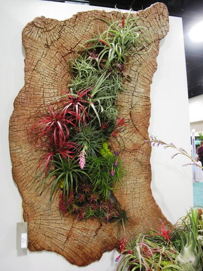 Tropical Garden by Debra Prinzing