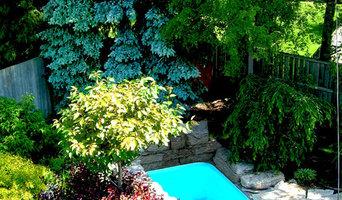 Tiny Pool and Mature Dream Gardens