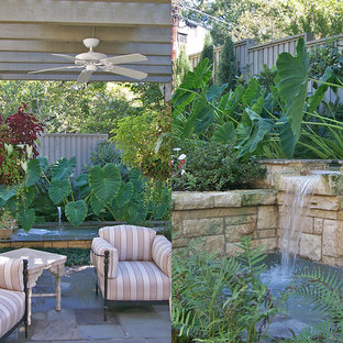 Photo of a transitional backyard landscaping in Dallas.