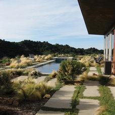 Modern Landscape by GEL: Griffin Enright Landscape