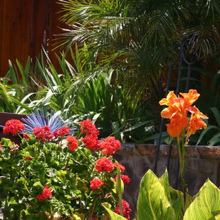This is an example of a tropical landscaping in Los Angeles.