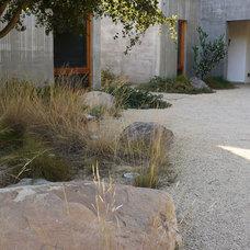 Mediterranean Landscape by Lane Goodkind Landscape Architect