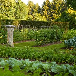 Bild på en vintage trädgård, med en köksträdgård