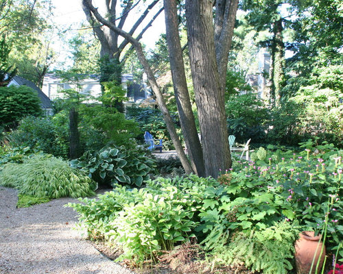 inspiration for a traditional backyard shaded garden in new york - Garden Ideas Under Trees