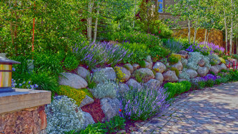Mountain Home Landscape in Vail, CO