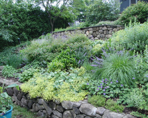 Perennials on steep slope houzz for Garden designs for steep slopes
