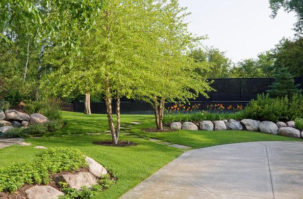Planting Under Birch Trees : Great design plant river birch