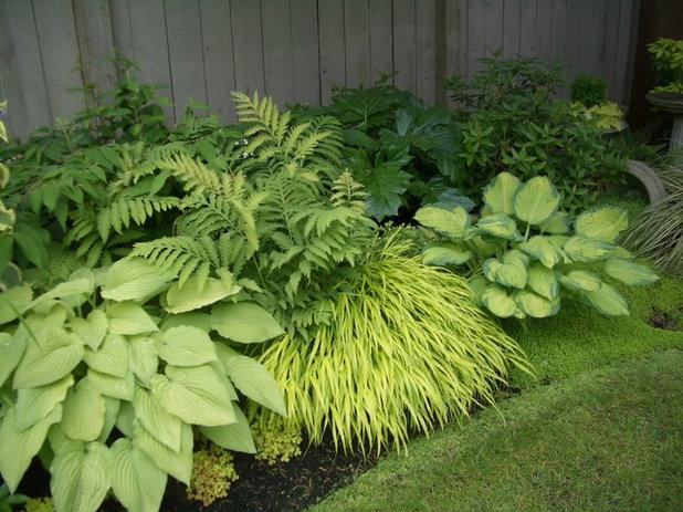Traditional Garden by Glenna Partridge Garden Design