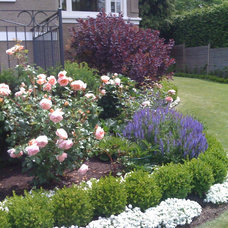 Traditional Landscape by Glenna Partridge Garden Design