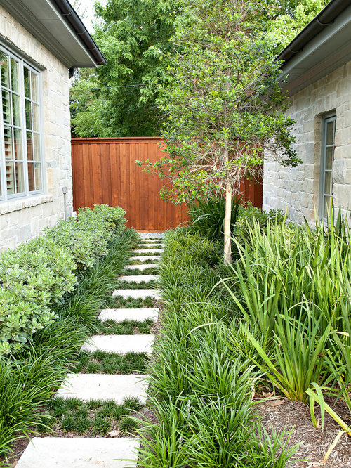 Narrow space plants home design ideas pictures remodel for Garden designs for side of house