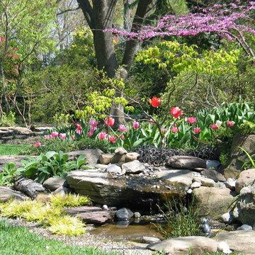 Tranquil Takoma Garden - Private Residence