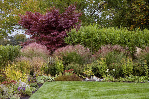 Transitional Landscape by Andrew Suvalsky Designs
