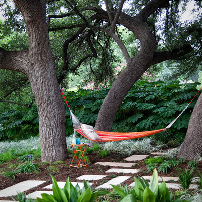 Inspiration for a contemporary drought-tolerant backyard landscaping in Austin.