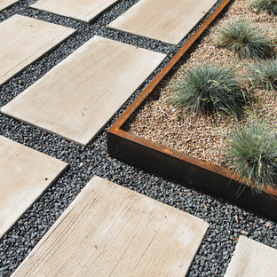 Inspiration for a mid-sized modern drought-tolerant front yard concrete paver garden path in Austin.