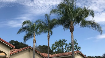 Tree and palm pruning.