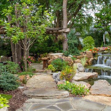 Tree and Waterfall Inspired Backyard