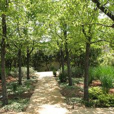 Traditional Landscape by Arterra Landscape Architects