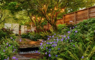 Yard of the Week: Underused Side Yard Now a Shady Retreat