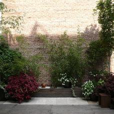 Contemporary Landscape by The Artist Garden