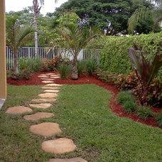Tropical Landscape by The Green Man Garden & Landscape