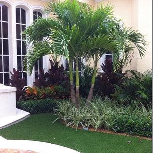 Foto di un giardino tropicale