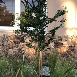 Design ideas for a small tropical full sun front yard gravel landscaping in Miami for winter.