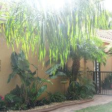 Tropical Landscape TROPICAL FLA