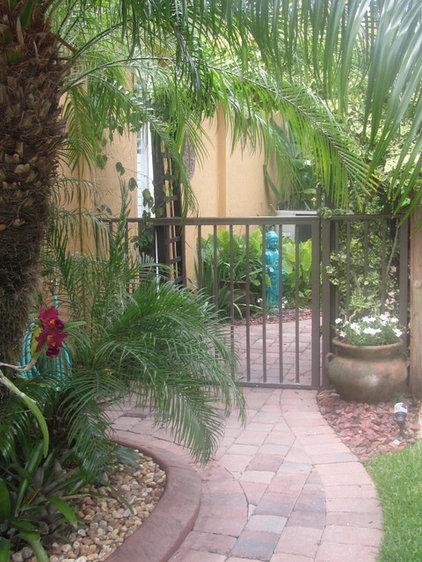 Tropical Landscape Tropical Florida