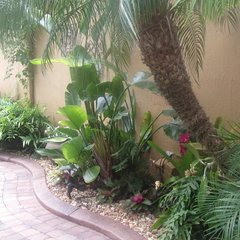tropical landscape Tropical Florida