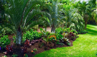 Tropical front & backyard landscapes....Palms & Color