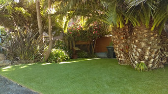 Tropical Front Yard Installation